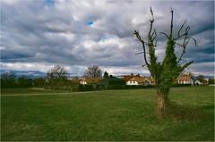 Saconnex-d'Arve - Maison en Cuivre-1 (OLDLENS24) Tags: