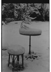 P59-2018-012 (lianefinch) Tags: argentique argentic analogique analog blackandwhite blackwhite bw noirblanc noiretblanc nb monochrome neige snow arbre tree jardin garden outdoor extérieur table seat