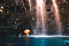 Ellinjaa Falls, Millaa Millaa, Australia Travel (BuckFlights.com) Tags: ellinjaafalls millaamillaa australia travel travelgram traveling travelphotography travelling traveler traveller travelblogger travelblog travels travelphoto travellife travelpics travelbug travelph travelpic travelers travelgirl travellers travelersnotebook travelmore travelogue travelasia travelporn travellover travelgoals travelworld travelwriter travelphotos instatravel