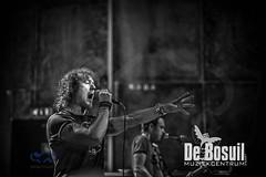 2017_03_17 Bosuil Don Airey _JMW9039-Johan Horst Fotografie Weert-WEB