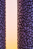 Mosaic Pillars (tainkeh) Tags: 2018 spring color sunset europa nature minimal weather pillar colour helsingør sunday rose danmark architecture 365 sky yellow mosaic april 365project denmark europe helsingor oplevhelsingor oplevhelsingør project365