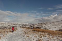 _DSC0098 - A splash of red... (SWJuk) Tags: swjuk uk unitedkingdom gb britain england yorkshire northyorkshire yorkshiredales dales wensleydale gayle hawes pennineway tenend path trail track hills hillside bluesky clouds fields farmland moors moorland drystonewalls grasses snow snowfall 2018 feb2018 winter holidays nikon d7100 nikond7100 1024mm rawnef lightroomclassiccc