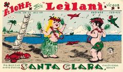 The Viking: Leilani - Santa Clara, California (73sand88s by Cardboard America) Tags: qsl qslcard cbradio cb vintage california theviking