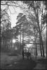 Walking in mist (Cattail_) Tags: caffenol caffenolc seurasaari helsinki spring easter fed fed3 industar61
