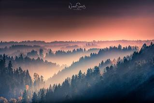 Magische Hügellandschaft im Bayrischen Wald