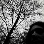 Micropoema: Ramas en la espalda thumbnail