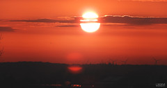 Sonnenuntergang Blick auf Kiel Wik (LXXXVI) Tags: sonnenuntergang kiel förde frühling kielerförde aprilorange rot sunset wolken möwe möwen dächer windrad windrädernahaufnahme sky himmel norden schleswigholstein ostsee baltic meer küste