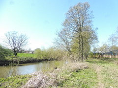 P1080169 (petelovespurple) Tags: ryedale northyorkshire yorkshire malton