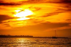 Yellow Red Sunset (Cracked_Lens) Tags: red yellow orange orangesky sunset sun sunsetboat sunlight floridasunset sky skyart skyporn skyonfire floridasky landscape landscapephoto landscapes