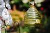 The Honey Jar! (BGDL) Tags: lightroomcc nikond7000 nikkor50mm118g bgdl niftyfifty nikkorafsmicro40mm128g prestwick garden honeyjar candleholder 7dos