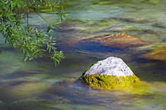Stone in the River (memories-in-motion) Tags: green red water tree flow time nature soca slo slovenia light sunlight waves canon landscape stone white color 5dmarkiv ef70300