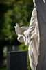 DSC_1369 (Rustam Bikbov) Tags: ангел памятник могила кладбище cemetery bogoslovskoecemetery богословскоекладбище санктпетербург июнь 2018
