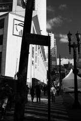 Centro, SP (Th. C. Photo) Tags: street streetphotography streetphoto streetphotographysp photography fotografia rua fotografiaderua pretoebranco blackandwhite pb bw b