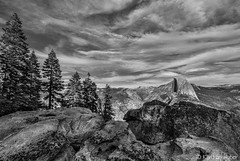 Yosemite - Half Dome from Glacier Point_B&W (www.karltonhuberphotography.com) Tags: 2013 afternoonlight autumn blackandwhite california clouds depthoffield downlow drama foreground glacierpoint glacierpointroad halfdome horizontalimage karltonhuber nikond7000 november pines rocks sigma1020mm sky texture trees view wideangle yosemite yosemitenationalpark