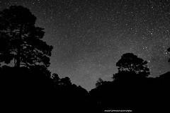 Enchanted sky (mariomanzanopx) Tags: blackandwhite cieloestrellado nightsky largaexposicion longexposure fotografianocturna