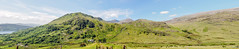 Snowdonia 6th June 2018 (boddle (Steve Hart)) Tags: snowdonia 6th june 2018 wild wilds wildlife life nature natural bird birds flowers flower fungii fungus insect insects spiders butterfly moth butterflies moths creepy crawley winter spring summer autumn seasons sunset weather sun sky cloud clouds panoramic landscape 360 arial steve hart boddle steven bruce wyke road wyken coventry united kingdon england great britain canon 5d mk4 6d 100400mm is usm ii 2470mm standard beddgelert wales unitedkingdom gb