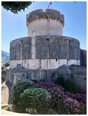 Minceta Tower
