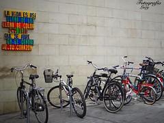 La vida es así. (habanera19) Tags: arte barcelona frase sumer barríogotico barríodelborn street urbanexploration bicycles letrerito