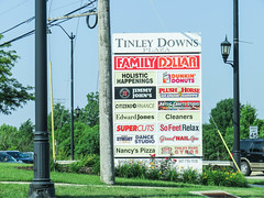 tinley downs plaza (timp37) Tags: sign illinois tinley park june 2018 downs plaza plush horse