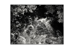 """Time is a sort of river... (tetleyboy) Tags: stoicism philosophy mono blackandwhite stream branches rocks flow movement 500px"