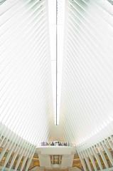 Oculus01a (vwxterra) Tags: oculus nyc 911 white futuristic