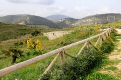 IMG_8053 (Vito Amorelli) Tags: segesta sicily dorictemple greektheater