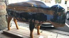 06112018-48 (Fruitcake Enterprises) Tags: yellowstone westyellowstone dlused bison