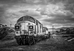 """End of The Line"" (Waddo's World of Railways) Tags: 37042 042 37 370 ews class37 warcop tractor growler syphon ee edenvalley scrap withdrawn wnxx condemed bw blackandwhitephotography blackandwhiterailwayphotography splitbox splitbox37 edenvalleyrailway railway train loco locomotive diesel"