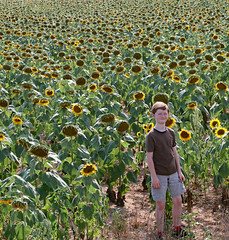 onthetraickcu (FAIRFIELDFAMILY) Tags: winnsboro train depot station granite blue fairfield county sc south carolina sunflower field jason taylor grant yellow pretty outside farm farming nature young old architecture stone brick building store town southern living garden gun fun flower flowers summer life boy warehouse