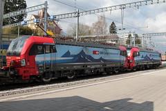 SBB Cargo International Siemens Vectron Lokomotive 193 466 - 0 D - SIEAG mit Taufname Bellinzona und 193 463 - 7  D - SIEAG mit Taufname Duisburg am Bahnhof Spiez im Kanton Bern der Schweiz (chrchr_75) Tags: christoph hurni chriguhurni chriguhurnibluemailch chrchr april 2018 chrchr75 schweiz suisse switzerland svizzera suissa swiss albumbahnenderschweiz albumbahnenderschweiz20180106schweizer bahnen bahn eisenbahn train treno zug juna zoug trainen tog tren поезд lokomotive паровоз locomotora lok lokomotiv locomotief locomotiva locomotive railway rautatie chemin de fer ferrovia 鉄道 spoorweg железнодорожный centralstation ferroviaria albumbahnhofspiez bahnhof spiez kantonbern berner oberland