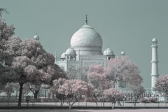 India with the Palace on Wheels (R V S Photography) Tags: rajisthan india taj mahal agra thar infrared culture travel wonderlust
