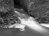 Water (Stanley Burn Woods) (Jonathan Carr) Tags: woodland rural northeast black white landscape bw monochrome mediumformat stream burn water