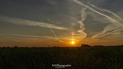 sunrise after the nightshift (michael_h1988) Tags: ifttt 500px night sunrise geseke germany sun sonne clearsky clear warm spring deutschland paderborn northrhinewestphalia