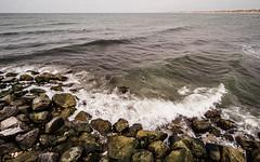 Surf …? (Poul_Werner) Tags: danmark danskefujientusiaster denmark nationalparkthy nrvorupør samyangcsc12mmf20ncscs beach hav ocean otherpeople photowalk sea strand thisted northdenmarkregion dk
