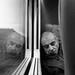 (Hogarth Ferguson) Tags: hasselblad501c film travel bergger berggerpancro400 ishootfilm traintravel traveltoitaly
