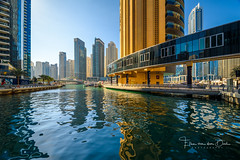 Dubai Marina (Ellen van den Doel) Tags: 2018 oosten emiraten east dubai reflectie city emirates uae vakantie arbische arabie reflection stad marina asia skyscraper water holiday midden arabic skyline azie middle verenigdearabischeemiraten ae
