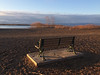 Waiting for the Sun IMG_5886 (iloleo) Tags: bench toronto cherrybeach spring morning park lakeontario iphone