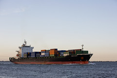 IRENES REMEDY (angelo vlassenrood) Tags: ship vessel nederland netherlands photo shoot shot photoshot picture westerschelde boot schip canon angelo walsoorden cargo container irenesremedy