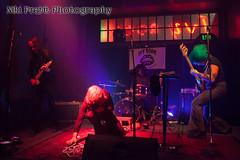IMG_5430 (Niki Pretti Band Photography) Tags: band concertphotography liveband livemusic livemusicphotography music nikiprettiphotography scottyoder ivyroom canon canon5d canonphotos canonphotography