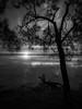touching / night (liam.jon_d) Tags: act jbt nsw mono arty australia australian australiancapitalterritory bw basin bherwerre bherwerrepeninsula billdoyle blackandwhite blackandwhitelandscape booderee boodereenationalpark boodereenp calm commonwealthofaustralia crepuscular dusk eastcoast evening federal jervisbay jervisbayterritory lake landscape landscapeimset monochrome newsouthwales peninsula pickmeset pool reflected reflection saintgeorge saintgeorgesbasin stgeorge stgeorgesbasin sunset territory tranquil twilight water