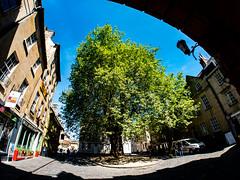Abbey Green (Quartley) Tags: crystalpalace abbeygreen bath england unitedkingdom somerset gb