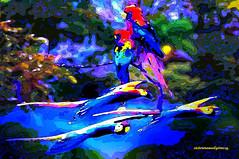 MACAWS IN BLUE WATER. (Viktor Manuel 990.) Tags: water macaws guacamayas blue azul nature naturaleza abstract abstracto digitalart artedigital textures texturas painting pintura vividcolors coloresvivos querétaro méxico victormanuelgómezg river río