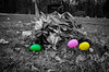 Egg Hunt (drei88) Tags: easter eastereggs childhood fleeting dark light loss mourning memories family years passage forlorn sad lost searching meaning atmosphere energy windswept desolate lonely longing incongruous dreary solitude mom