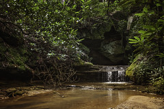 at the end of the trail (Kathy Froilan) Tags: water river tree forest creek woods waterfall rocks cave stream kentucky canoneos5dmarkii canonef1635mmf28liiusm rhododendron mountains appalachia moss lichen quiet hushed peaceful