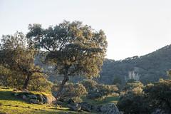 Sierra de Andujar - Andalusia - Spain (wietsej) Tags: sierra de andujar andalusia spain rx10 iv rx10m4 nature landscape sony rx10iv