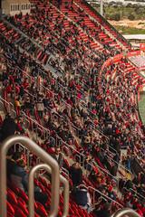 _MG_9910 (sergiopenalvagonzalez) Tags: futbol domingo palma de mallorca pelota jugadores aficion rojo negro pasion