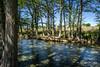 Medina River at Ranger Crossing (mike.potter) Tags: bandera guadaluperiver kerrville medina medinariver roadtrip texas