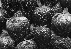 Black and white macro of yummy strawberries background (rawpixel.com) Tags: background berry blackandwhite bw closeup delicious food fresh freshness fruit grayscale healthy juicy macro name natural nutrition organic pattern raw red ripe season seasonal seed slice strawberry sweet tasty texture textured vitamin wallpaper