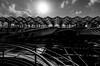 _DSC3366-3 (durr-architect) Tags: oriente station lisbon portugal santiago calatrava rough concrete steel structure space glass floor train metro arches beams modern architecture expo platforms bridge