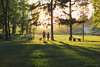 Day in the Park. Golden Hour (Tanjica Perovic) Tags: couplewithdog walking qualitytime spring green backlight sunlight evening shadows trees three walkingadog pirot serbia srbija kale goldenhour precious moment family young freetime